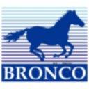 Logo de BRONCO